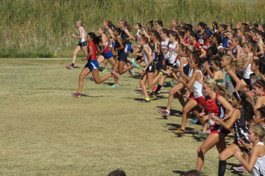 Cross+country+runners+qualify+for+state+competition