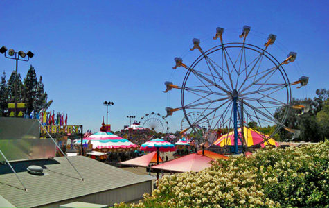 2017 Summer Festivals