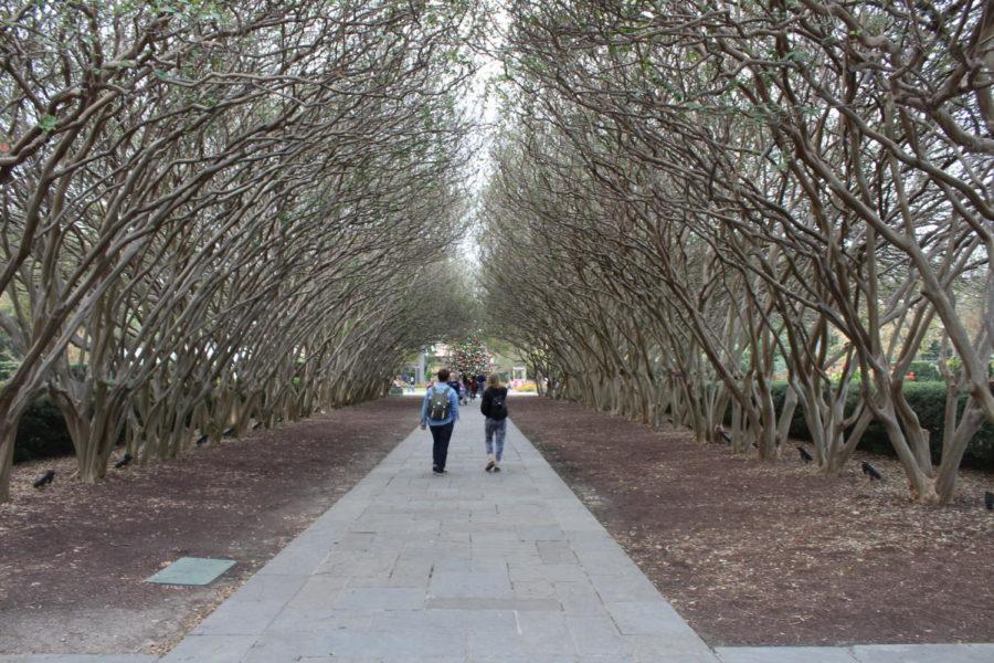Arboretum+Picture+Gallery