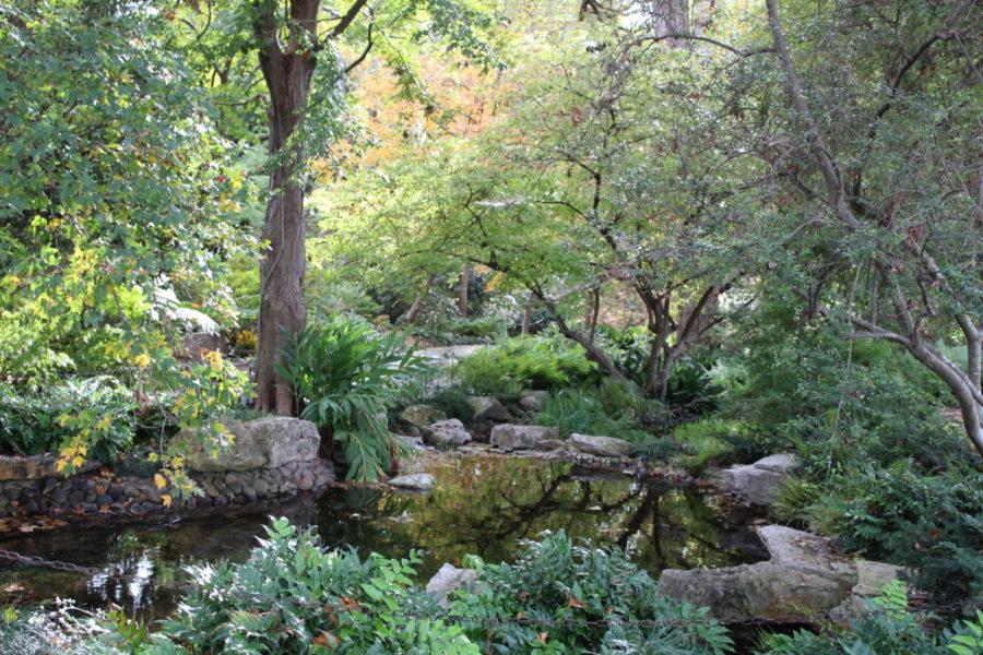 A+visit+to+the+Dallas+Arboretum