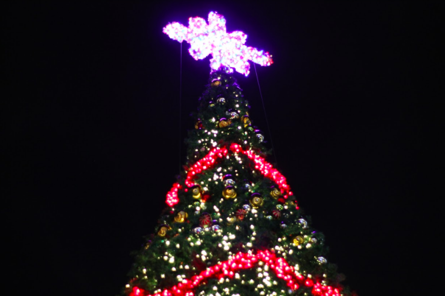 The local area offers many festive events to spread Christmas cheer. Pictured is the large Christmas tree from last year's Village Glow event in the Shops of Highland Village.