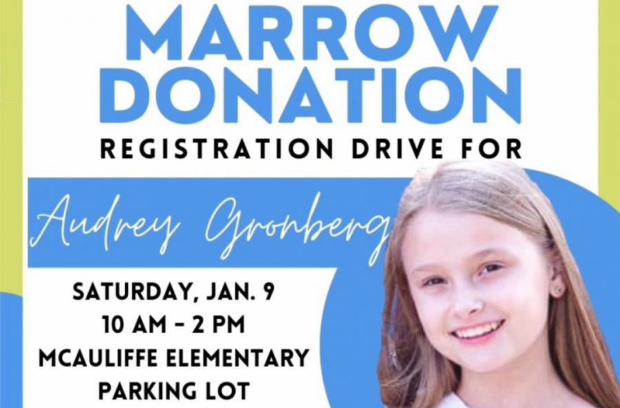 The registration drive will take place from 10 a.m. to 2 p.m. at McAuliffe Elementary School. It is being held in hopes of finding a match for Briarhill Middle School seventh grader Audrey Gronberg, who has severe aplastic anemia.
